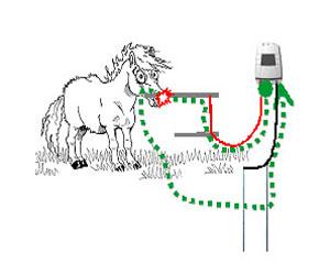 Fungování elektrického ohradníku